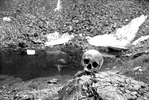 Szkielety z datowaniem węgla